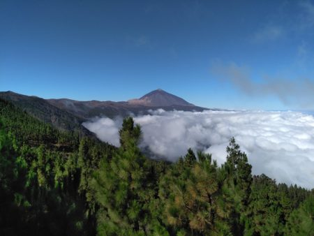 Retreats in Nature on Tenerife – A training in awareness, sincere communication and deep connecting